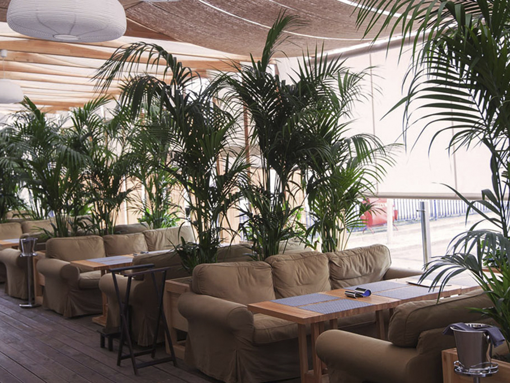 ресторан Кафе 21 в Москве